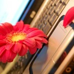 NaturalSensia, compra online ecológica de Cosmética Natural