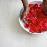 Crema de rosas del Dr Hauschka un clásico muy de moda