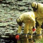 El peligro ambiental de los exfoliantes plásticos