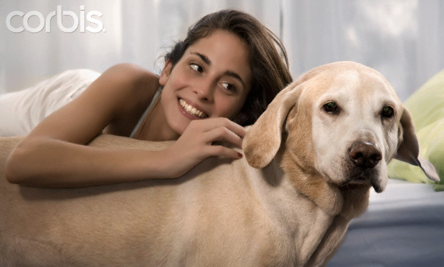 Young woman in bed petting dog
